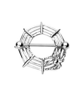 Hot brystskjold spiderweb med lille edderkop