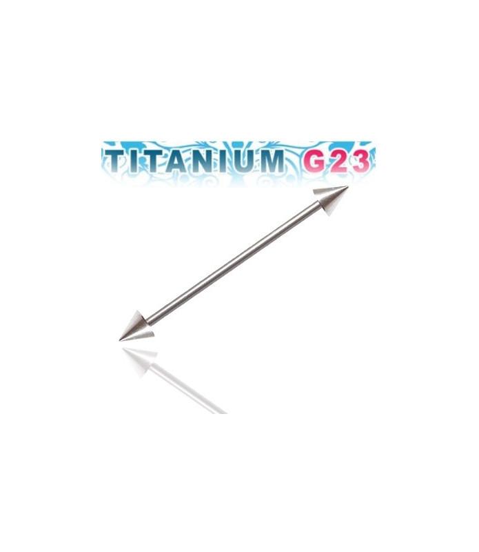 Industrial piercing i titanium med spikes